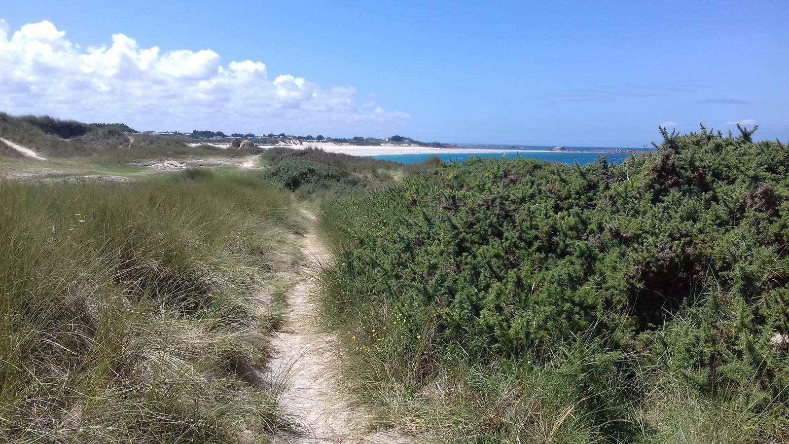 sand-coast-hiking