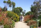 Roscoff Botanical Garden
