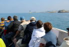 Tours of the Bay of Morlaix